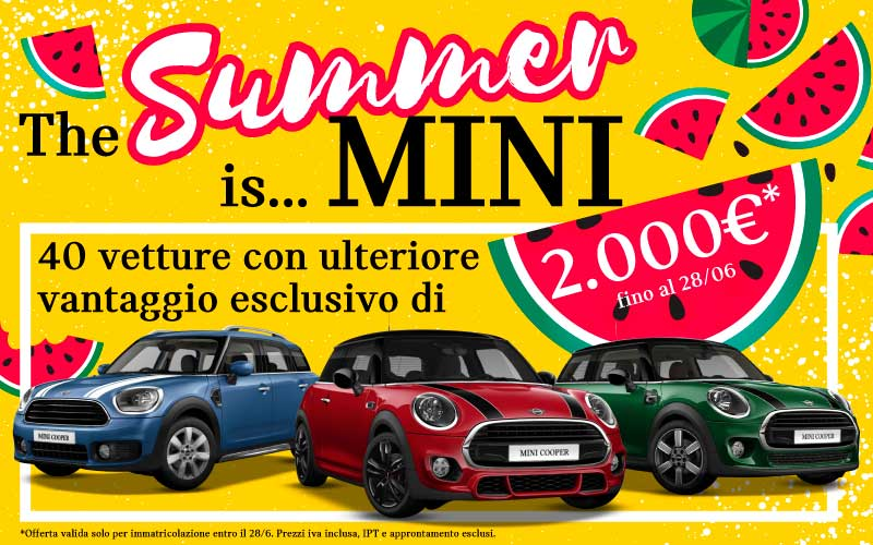 Mini Summer